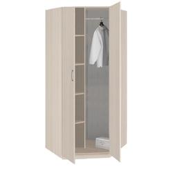 5.09 Шкаф для одежды угловой 2-х дверный 970х1995х970 серия Лотос
